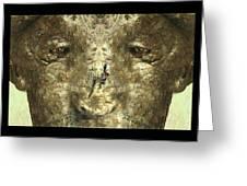 Lizard Head Greeting Card