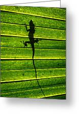Lizard On The Other Side Greeting Card