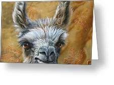 Llama Baby Greeting Card by Jurek Zamoyski