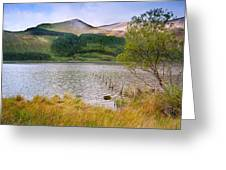 Llyn Cwellyn In Snowdonia National Park Towards M Greeting Card