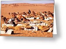 Loading A Salt Caravan Greeting Card
