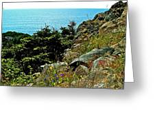 Lobster Cove Head In Gros Morne Np-nl Greeting Card