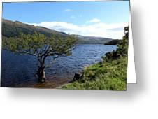 Loch Lomond Tree Greeting Card