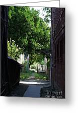 Locke Chinatown Series - Alley With Trees - 5 Greeting Card