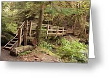 Log Bridge In The Rainforest Greeting Card