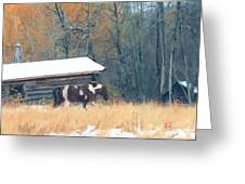 Log Cabin Pony Greeting Card