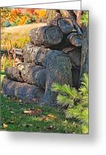 Log Pile Greeting Card