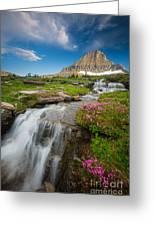 Logan Pass Cascades Greeting Card