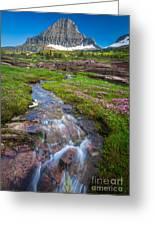 Logan Pass Creek Greeting Card