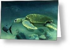 Loggerhead Turtle Greeting Card