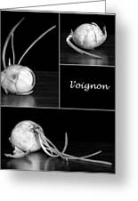 Onion Kitchen Art - L'oignon - Black And White Greeting Card