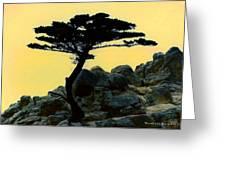 Lone Cypress Companion Greeting Card