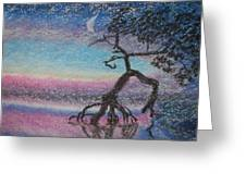 Lone Dancer By Moonlight  Greeting Card