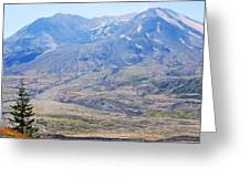 Lone Evergreen - Mount St. Helens 2012 Greeting Card
