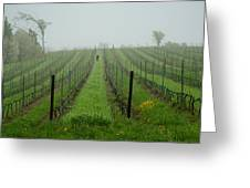 Lone Figure In Vineyard In The Rain On The Mission Peninsula Michigan Greeting Card