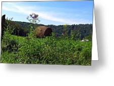 Lone Hay Round Greeting Card by Willy  Nelson