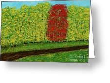 Lone Maple Among The Ashes Greeting Card