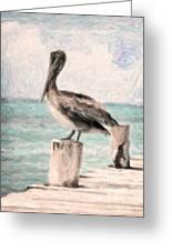 Lone Pelican Greeting Card
