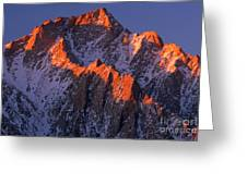 Lone Pine Peak - February Greeting Card