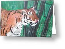 Lone Tiger Greeting Card