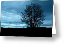 Lone Tree At Dusk Greeting Card