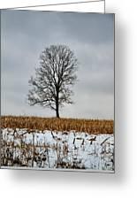 Lone Tree In Winter Greeting Card