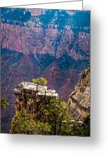 Lone Tree On Outcrop Grand Canyon Greeting Card