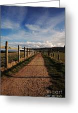 Lone Walker On The North Yorkshire Coastal Path Greeting Card