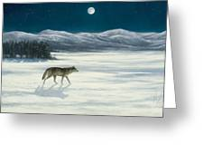 Lone Wolf In Winter   Version 2 Greeting Card by Steve Swavely