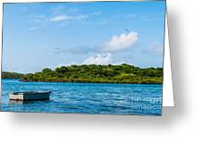 Lonely Boat Greeting Card by Luis Alvarenga