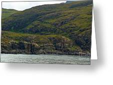 Lonely Coast 1 Greeting Card