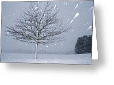 Lonely Tree In Snow Bavaria Greeting Card