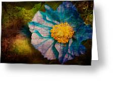Lonesome Beauty  Greeting Card