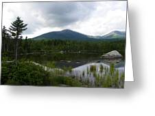 Lonesome Pine At Sandy Stream Pond Greeting Card