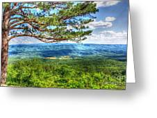 Lonesome Pine Greeting Card