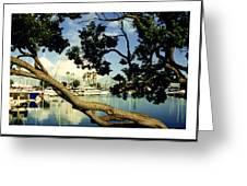 Long Beach Marina Greeting Card