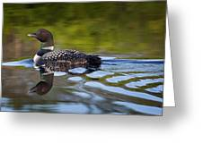 Long Lake Loon Greeting Card