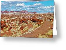 Long Logs Trail In Rainbow Forest In Petrified Forest National Park-arizona  Greeting Card