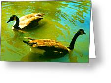 Long Neck Ducks Greeting Card