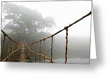 Long Rope Bridge Greeting Card by Skip Nall