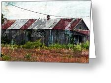Long Since Abandoned - Back To Nature Greeting Card