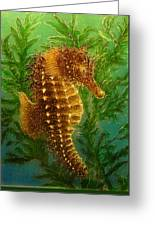 Long Snout Seahorse Greeting Card