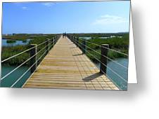 Long St. Augustine Marsh Dock Greeting Card