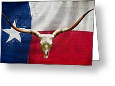 Longhorn Of Texas 2 Greeting Card