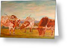 Longhorns On The Plateau Greeting Card