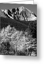 Longs Peak 14256 Ft Greeting Card