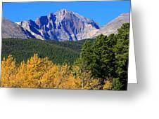 Longs Peak Autumn Aspen Landscape View Greeting Card
