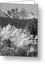 Longs Peak Autumn Scenic Bw View Greeting Card
