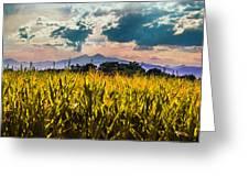 Longs Peak Harvest Greeting Card by Rebecca Adams