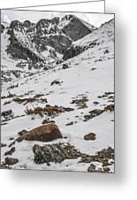 Longs Peak -  Vertical Greeting Card by Aaron Spong